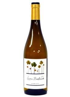 Λευκοί οίνοι Luna Beberide Godello
